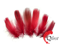 Factory wholesale plumage dyed red mallard duck flank feathers for sale