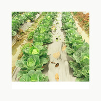 High quality cheap PBAT PLA disposable biodegradable film for agriculture with EN13432 BPI OK compost home ASTM D6400