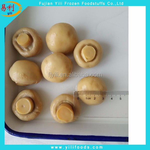 High Quality Canned Champignon Mushrooms in brine