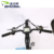 48V 350W Dual Motor electric bike Fat Tire Electric bicycle MTB electric bike
