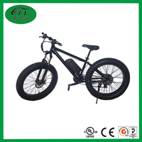 Hidden Li- Battery Snow Electronic Bicycle