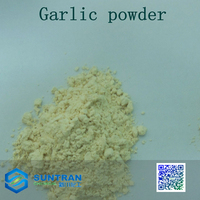 Eu standard China supply dried vegetables dehydrated bulk garlic powder 100-120mesh