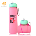 2018 Trending Products 600Ml Fancy Hiking Oem Water Bottle Plant