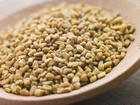 Fenugreek Seed/Methi