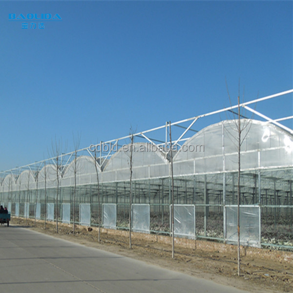 BLD Low Cost Greenhouse For Vegetables