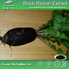 Free sample Black Radish extract/Black Turnip extract/Black Carrot extract plant extract