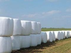 Silage wrap bale Competitive Price Corn Silage Film