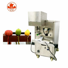 industrial fruit mango and vegetable peeling machine