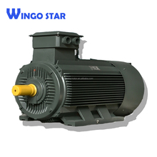 electric ac motor