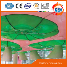 Project lightweight building pvc home decorate bathroom ceiling material with 15-year warranty for swimming pools