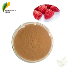 Natural plant fruit extract juice powder supplement natural raspberry ketone