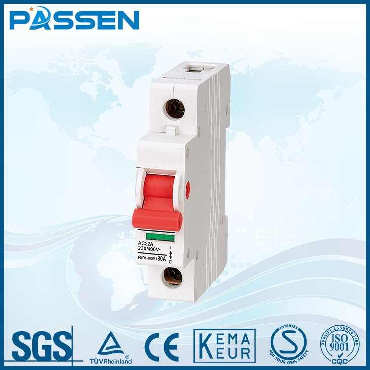 PASSEN Customized single pole mini circuit breaker interruptor price