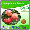 Skin Lightening Pomegranate Extract with 10%-70% Polypheols