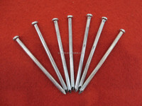 concrete steel nails/galvanized concrete nails/concrete anchor nails