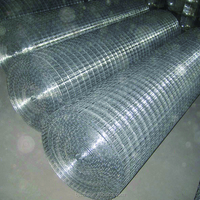 Stainless Steel Galvanized Welded Wire Mesh Dog Cage Factory