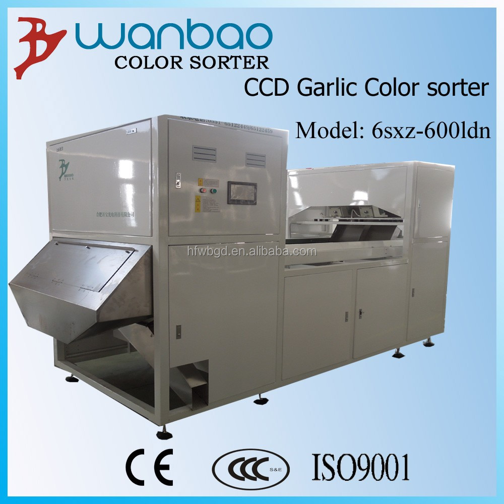 popular,hot selling,belt type,orange color sorter machine