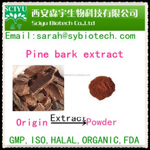 Natural Pine Bark Extract Proantocyanidins(OPC) 95%