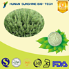 Alibaba China Rosemary extract HPLC 15%-98% Ursolic acid