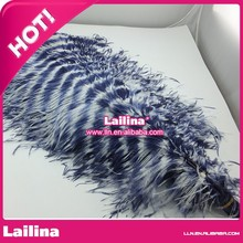 Hot sell Fashion Wedding Decoration Best Ostrich Feather