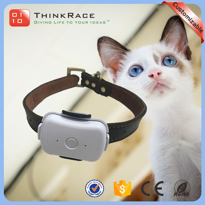 Waterproof IP67 GPS LBS double ways positioning cat tracking gps cat