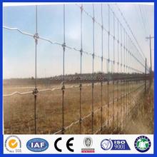 Hot sale! sheep wire mesh fence&Goat Fence&Field cattle fence