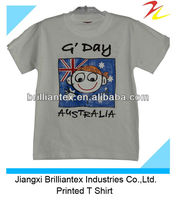 Funny Dri Fit Round Neck Light Grey Printed Childrens Tee shirt