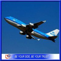 professional courier tracking to Brazil