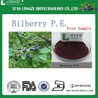 health supplement antioxidant ageing bilberry extract powder anthocyanidins 25% polyphenols 20%