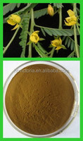 Supply Pure Natural Cassia Nomame, Flavanol Extract Powder.