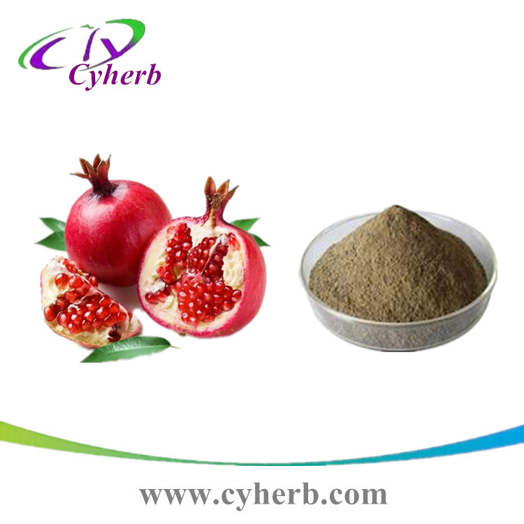 Pomegranate peel extract powder, Ellagia acid 20%, CAS: 476-66-4