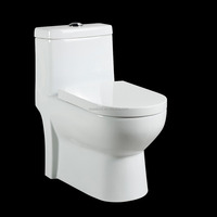 alibaba china wash down s-trap250mm hidden camera one piece toilet