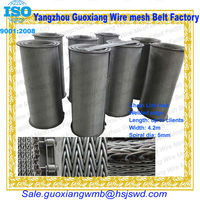 high quality chain link conveyor belt wire mesh v or conveyer belt OEM china with wire mesh endless belt
