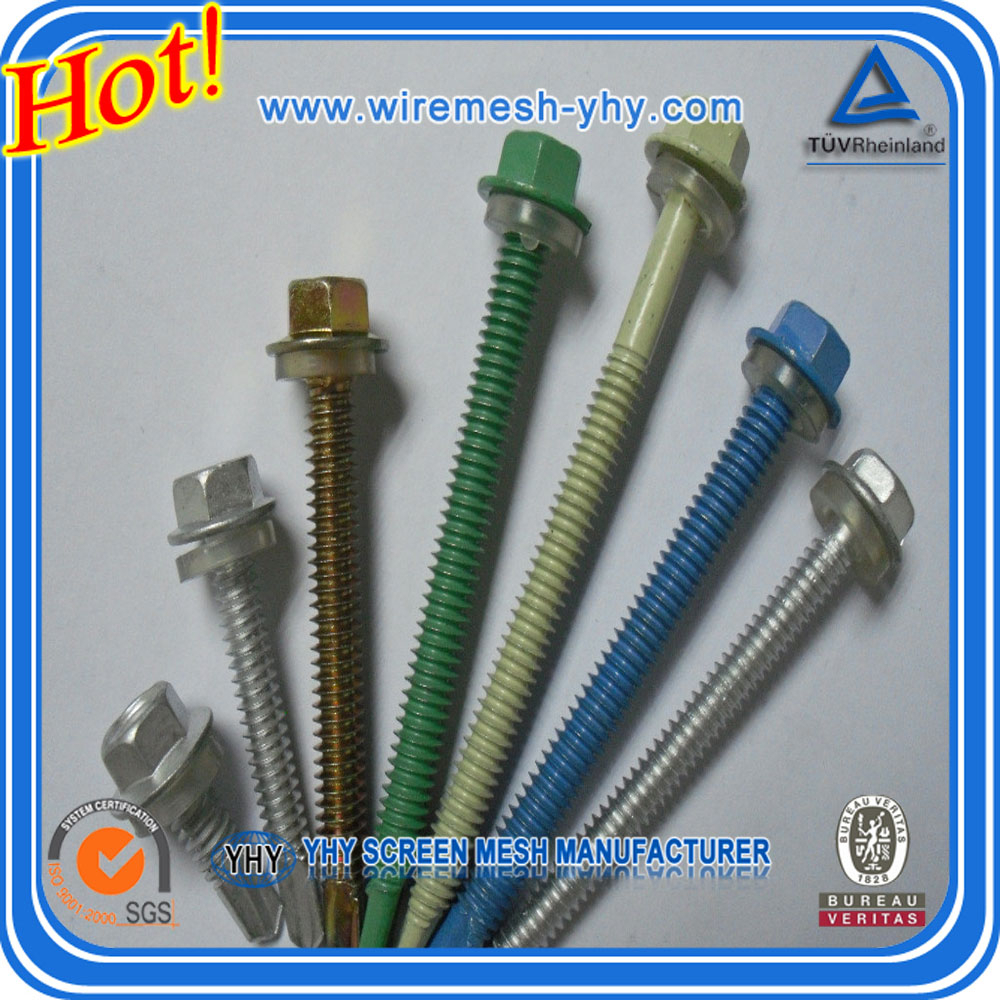 factory wholesale hex washer head pillips srews with the best quality and competitive price