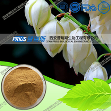 Manufacturer Provide High Purity Yucca Schidigera Extract
