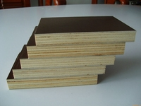 the whole poplar/pine/birch core film faced plywood 1220*2440*18