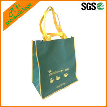 Reusable pp non woven double handle shopping bag(PRA-815)