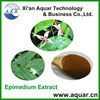 /product-gs/icariins-herbal-sex-products-seeds-epimedium-family-testosteron-powder-1991629174.html