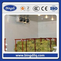 cold storage cold room cold warehouse handel negative temperature
