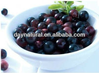 Factory Supply Acai Berry Powder Extract 10:1 20:1 (Hot sale)!