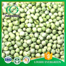 New Product Delicious Food Frozen Dried Green Pea FD