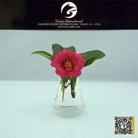 New style factory directly provide different types glass vase
