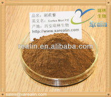 tribulus terrestris extract powder 95% Steroidal Saponins muscle building herbal supplements