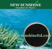 Soluble Seaweed organic fertilizer refined powder form