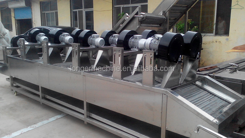 Food vegetable fruit dryer machine