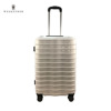 Damao Factory Hot Sale Hard Shell ABS Trolley Luggage