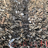 Low Price Metal Scrap / Steel Scrap from China