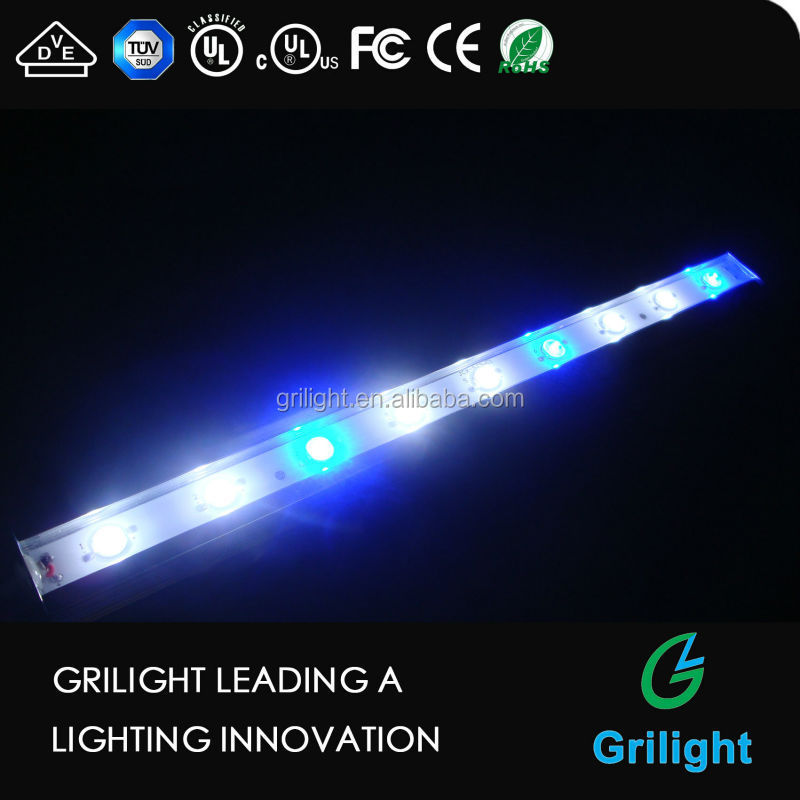 Chinese IP68 Aquarium Submersible Led Light