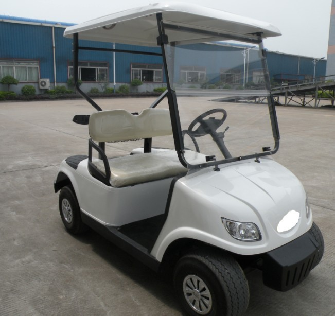 Hot sale suitable price 2 Seater resort electric garden cart golf buggy