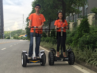 New electric chariot scooter , Freego off road adult kick scooter big wheels