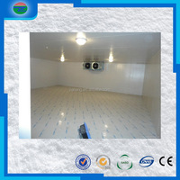 Bottom price competitive fresh cherry fruit walking in cold room